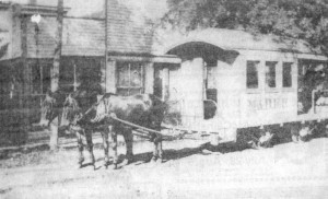 The mule line (175 Years of Memories)