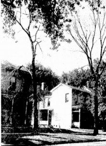 Elms in the 600 block of South Seventh Street, 1946 (courtesy SJ-R)