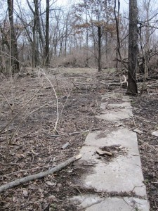 Sidewalk remains, west section of Irwin's Park (SCHS)