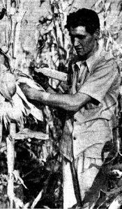 1940 top husker Lee Werner (SJR)