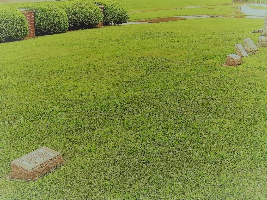 The headstones of Isabelle and (background) Doran Brubaker lie almost 20 feet apart, separated by the unmarked graves of their children who died young, at Pleasant Hill Cemetery (SCHS)