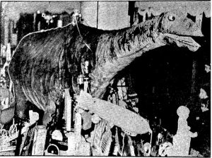 "Rinnus' 1932 dinosaur, which included a bridle, was obviously patterned after one in the the old ""Alley Oop"" comic strip. (State Journal-Register; used with permission)"