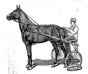 "Dan Patch, ""king of all pacers,"" 1906 (Courtesy State Journal-Register)"